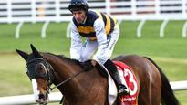 Tom Melbourne hoping to make Melbourne Cup his own  with Glen Boss' assistance