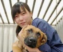 The Tragic Story of a Taiwanese Vet Who Euthanized Herself After Having to Put Down Too Many Dogs