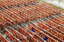 Over 10,000 Jinhua Hams Sunbathe in Zhejiang Yicai
