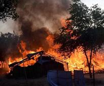 Mathura violence: Who was Ram Vriksh Yadav and what is his cult all about