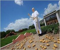 Italian Potato Field Witnesses Unveiling Of Pope Statue