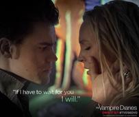 The Vampire Diaries Season 8 spoilers: Paul Wesley opens up about Nina Dobrev's return