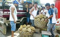 Distinctly Davao