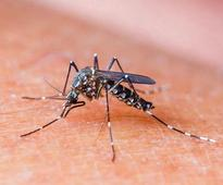 Mandla district to be free of malaria in 3 years