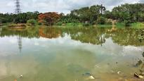 Locals oppose beautification of Lokhandwala lake