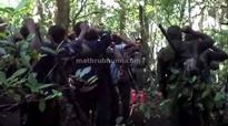 Maoists say would retaliate before Nov 24
