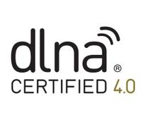 DLNA upgrade solves that file not supported problem
