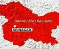 Hussain, Mir file nominations for bypoll to Anantnag LS seat