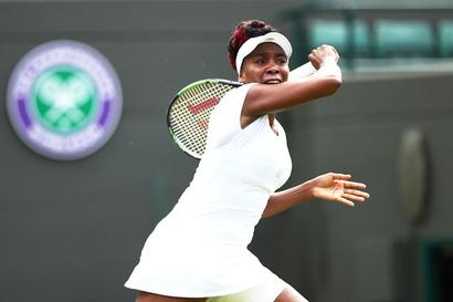 Commentator fired for Venus 'guerilla' remark suing ESPN