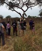 Uganda Murchison Falls National Park: Giraffe translocation