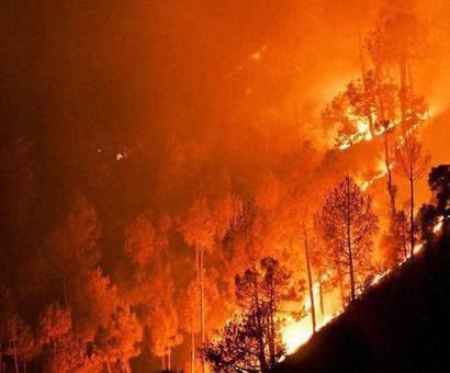 The devastating effects of the Uttarakhand fires
