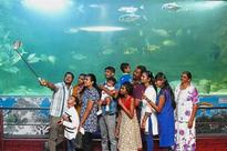 Aquarium a hit with holidaymakers