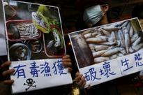 Taiwan activists press Formosa Plastics over dead fish in Vietnam