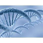 Cell Free Protein Expression Market Expected to Account for US$ 268.4 Million by 2024