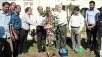 Kerala Governor plants mango sapling to mark second anniversary of tenure