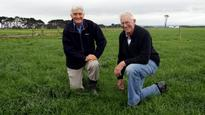 Waimate West Demonstration Farm cropping trial up for discussion at field day