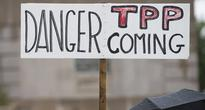 TPP Trade Deal to Affect Neither Russian Export Nor Import