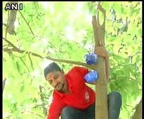 Volunteers come forward to the rescue of birds in heat-stricken Hubli