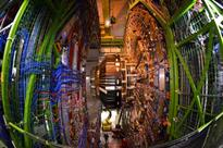 Weasel shuts down world's most powerful particle smasher