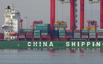 US challenges Chinese raw material export duties