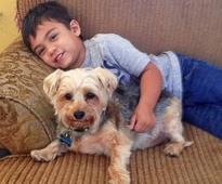 6-year-old with autism reads to shelter dogs so they won't feel lonely