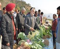 DG ICAR visits KVK Reasi, interacts with farmers