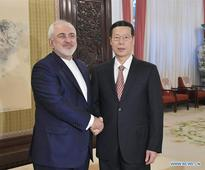 Chinese vice premier meets Iranian FM in Beijing