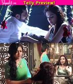 Ek Tha Raja Ek Thi Rani: Ranaji to consummate his marriage with Rajeshwari?