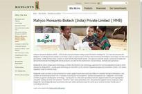 HC vacates stay on Telangana govt's order slashing royalty fee of Monsanto Bt cotton seed