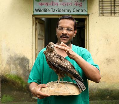 Meet India's only practising taxidermist