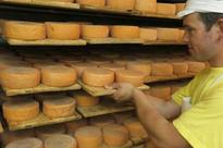Say 'cheese' for Sikkim's new global flavour sensation