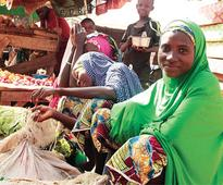 Boko Haram: Widows in Yobe commend NGO over empowerment initiative