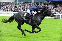 'Speed machine' Caravaggio fired up for Phoenix by Aidan O'Brien