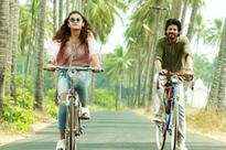 Dear Zindagi 3-day box office collection: Shah Rukh-Alia starrer performs brilliantly over 1st weekend
