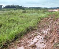 Excess land: taluk board leaves decision to govt.