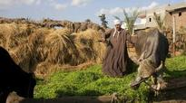 Near East countries discuss food security