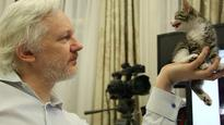 Court won't drop Julian Assange rape investigation
