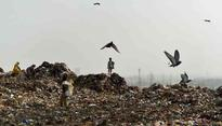 The Wasteland: Does Delhi have a way out of its garbage crisis
