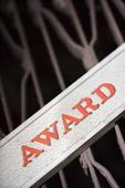 Awards given away at St John's School