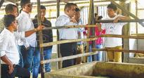 Prof AK Mudgal inspects vermicompost unit at Yumnam Khunou