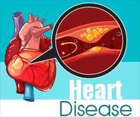 Heart Disease - Infographic
