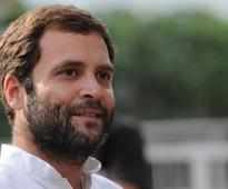 Rahul Gandhi expected to take over as Congress chief this year