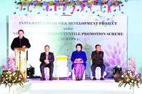 Mizo project to boost silk yield