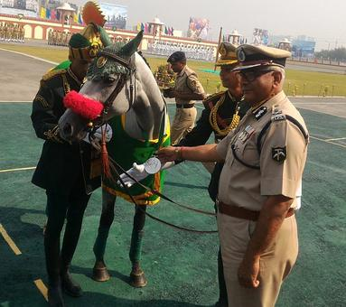 ITBP awards medals to its four-legged soldiers
