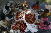 Supreme Court bans firecrackers in Delhi for Diwali