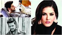 From Sooraj Pancholi to Sunny Leone, these celebs think Chennai animal offenders let off too easy
