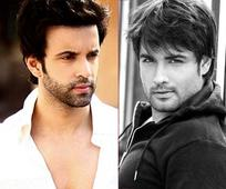 Vivian Dsena and Aamir Ali talk about the no-dating clause