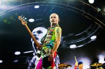 Red Hot Chili Peppers Mistaken for Metallica by Belarus Customs Officers