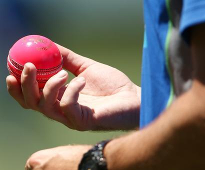 Italy's former cricket captain a terror suspect