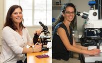 Biologists Receive 2016 MacArthur 'Genius Grants'